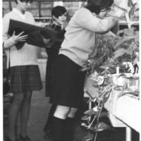 RG_Botany 1968.jpg